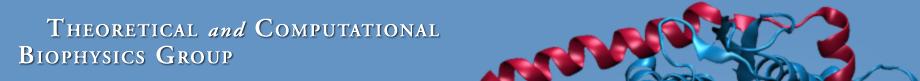 Theoretical and Computational Biophysics Group logo