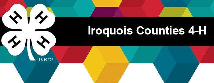 Ford-Iroquois Counties 4-H E-Newsletter
